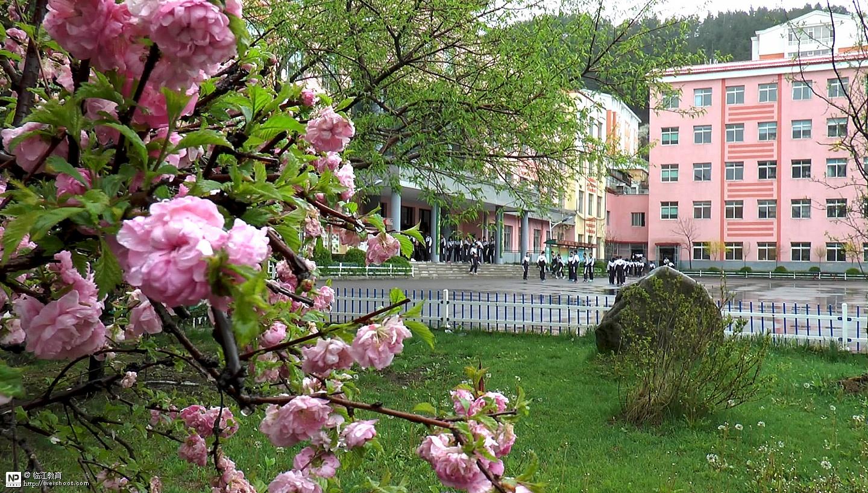 春雨中的外国语学校